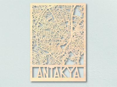 Landkaart hout Antakya