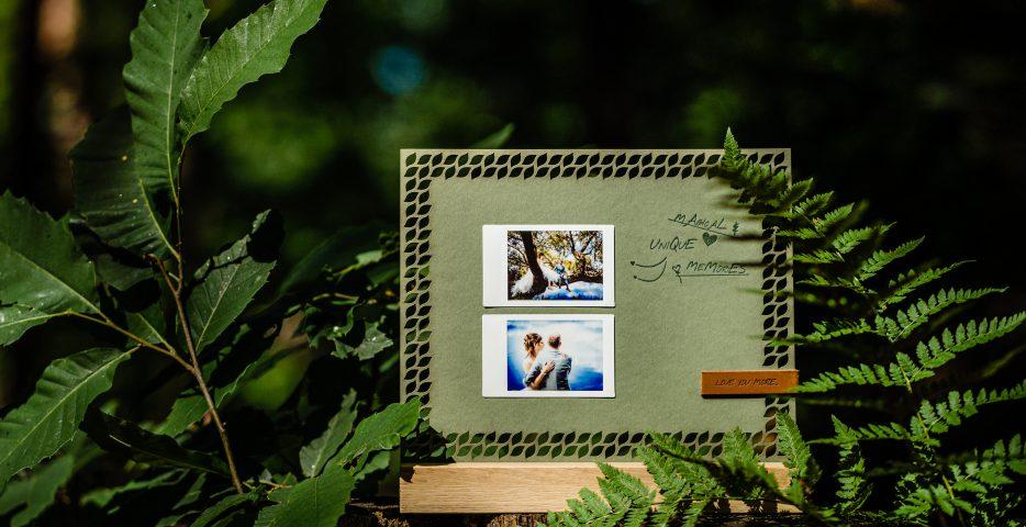 Colorplan Mid Green letterpress lasercut display Karakter Prints